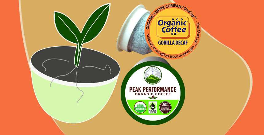 Best Organic Coffee K-Cups 2021: Healthy Can Be Tasty Too!