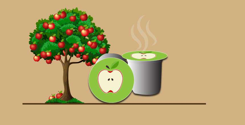Best Apple Cider K-Cups: Refreshing, Sweet, Quick Treats in a Cup