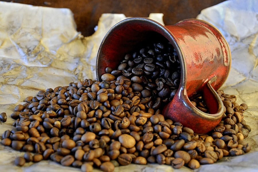 beans with high coffeine level