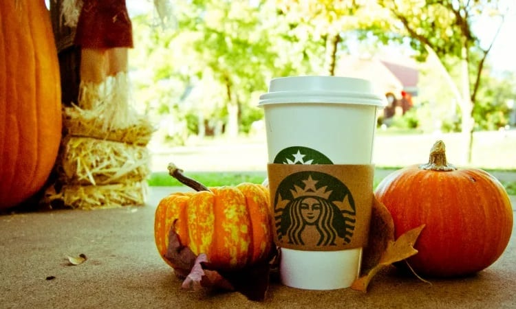 pumpkin spice coffee from starbucks