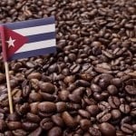 Cuban Coffee: Why Is It So Delicious?